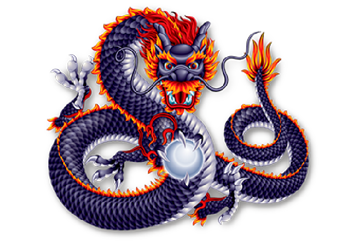 Enjoy11 5 Dragon Online Gambbling Games Terms & Conditions Icon