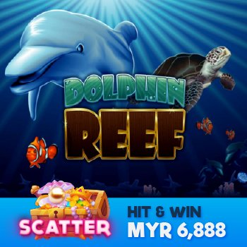 Bet on Dolphin Reef Today in Enjoy11 Malaysia